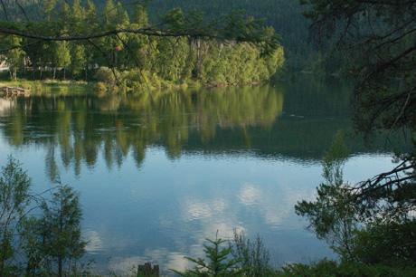 montana-july-08-175.jpg