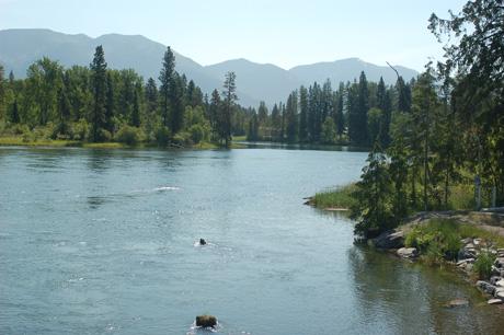 montana-july-08-55.jpg