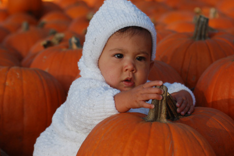 100609-pumpkin-patch-37.jpg