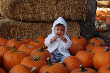 100609-pumpkin-patch-51.jpg